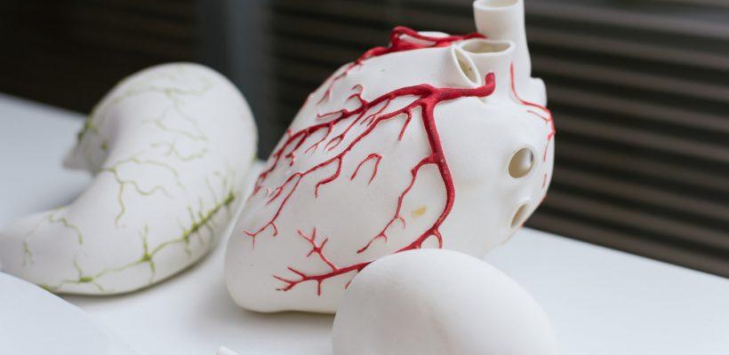 Diseño e impresión 3D en la medicina